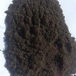 basil seeds powder