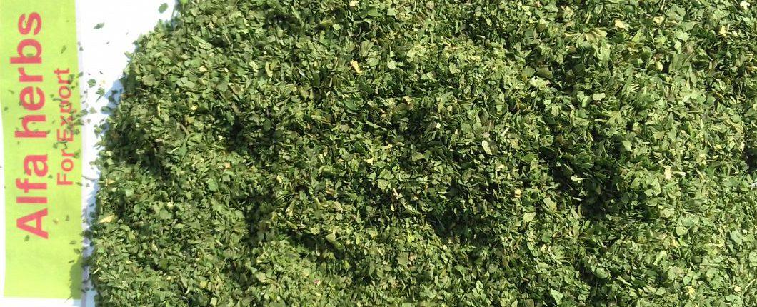 dried parsley leaves photo