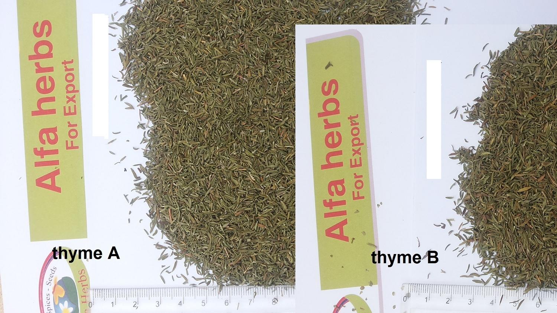thyme grade A vs thyme grade B