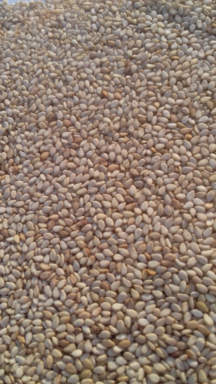 golden sesame seeds